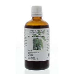 Natura Sanat Yucca filamentosa / yucca tinctuur (100 ml)