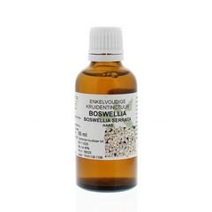 Natura Sanat Boswellia serrata / boswellia tinctuur (50 ml)