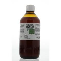 Natura Sanat Artemisia annua / zomeralsem tinctuur (500 ml)
