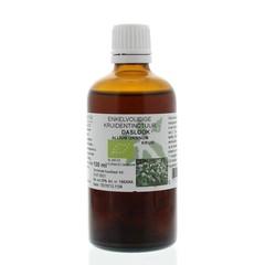 Natura Sanat Allium ursinum / daslook tinctuur (100 ml)