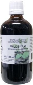Natura Sanat Natura Sanat Dioscorea villosa / wilde yam tinctuur (100 ml)