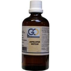 GO Ampelopsis weitchii (100 ml)