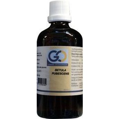 GO Betula pubescens (100 ml)