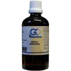 GO Betula verrucosa (100 ml)