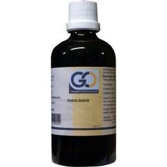 GO Rubus idaeus (100 ml)