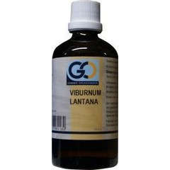 GO Viburnum lantana (100 ml)