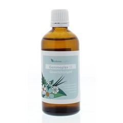 Balance Pharma HGP026 Gemmoplex gewrichtslympf (100 ml)