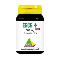SNP EGCG+ puur (60 capsules)