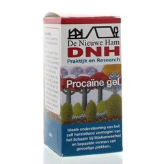 DNH Procaine gel (50 ml)