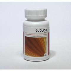 Ayurveda Health Guduchi tinospora (60 tabletten)
