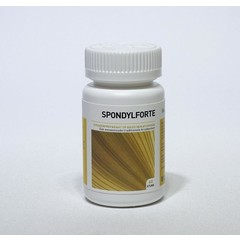 Ayurveda Health Spondylforte (60 tabletten)