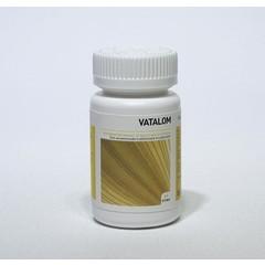 Ayurveda Health Vatalom (60 tabletten)