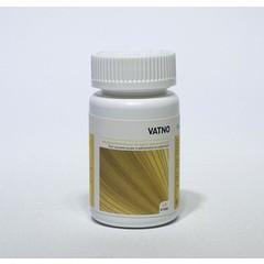 Ayurveda Health Vatno (60 tabletten)
