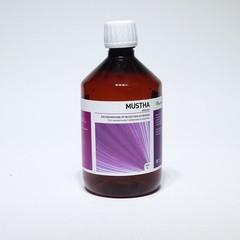 Ayurveda Health Mustha arishtam aristha (500 ml)