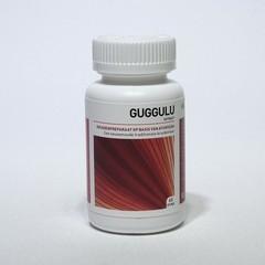 Ayurveda Health Guggulu (60 tabletten)