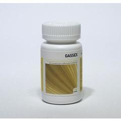 Ayurveda Health Gassex (120 tabletten)