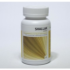 Ayurveda Health Shallak (120 capsules)