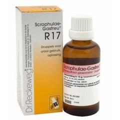 Reckeweg Scrophulae gastreu R17 (50 ml)