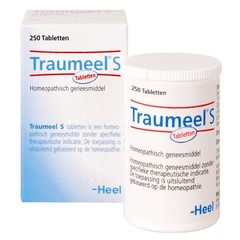 Heel Traumeel S (250 tabletten)