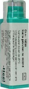 Homeoden Heel Homeoden Heel Ammonium carbonicum 10MK (6 gram)