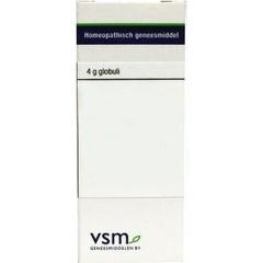 VSM Argentum nitricum 10MK (4 gram)