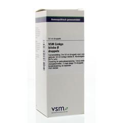 VSM Ginkgo biloba oer (50 ml)