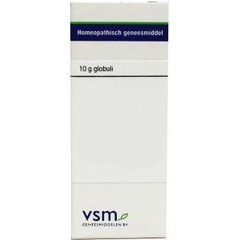 VSM Ginkgo biloba D3 (10 gram)