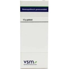 VSM Ginkgo biloba D6 (10 gram)
