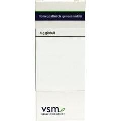VSM Mercurius solubilis 200K (4 gram)