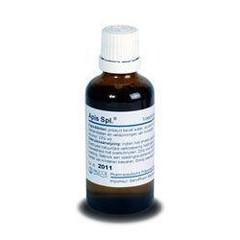 Pascoe Apis similiaplex (50 ml)
