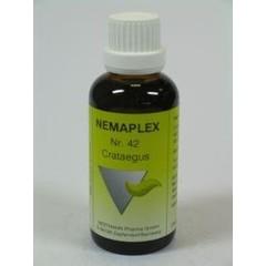 Nestmann Crataegus 42 Nemaplex (50 ml)