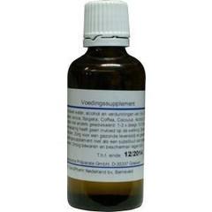 Pascoe Iris similiaplex (50 ml)