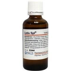 Pascoe Ledu similiaplex (50 ml)