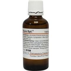 Pascoe Nuvo (nux vomica) similiaplex (50 ml)