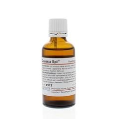 Pascoe Quassia similiaplex (50 ml)