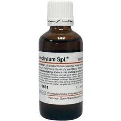 Pascoe Symphytum similiaplex (50 ml)