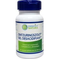 Energetica Nat Ontzuringszout (60 capsules)