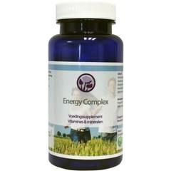 Nagel Energy complex (60 vcaps)