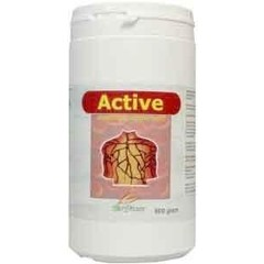 Biodream Active (800 gram)