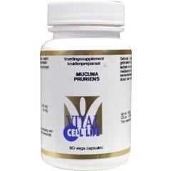 Vital Cell Life Mucuna pruriens (60 capsules)