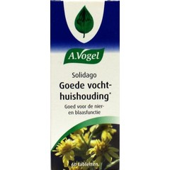 A Vogel Solidago (60 tabletten)