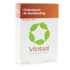 Vitotaal Wijnpit OPC (45 capsules)
