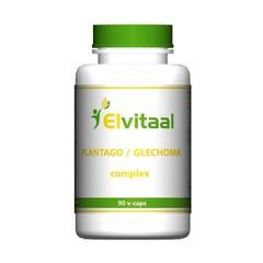 Elvitaal Plantago/Glechoma complex (90 capsules)
