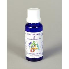 Vita Eiwitsynthese 11 DNA partiele monosomie (30 ml)