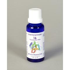 Vita Eiwitsynthese 16 RNA translocatie (30 ml)