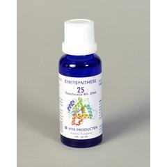 Vita Eiwitsynthese 25 DNA translocatie mitochondriaal (30 ml)