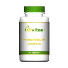 Elvitaal Paardenbloem complex (90 capsules)