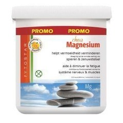 Fytostar Magnesium chew kauwtabletten (120 kauwtabletten)