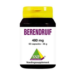 SNP Berendruif 480mg (60 capsules)
