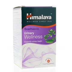 Himalaya Wellness boerhaavia (60 capsules)